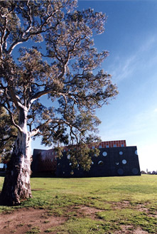 &quot;Bundoora Redgum&quot;