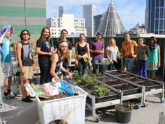Green Roof Tour